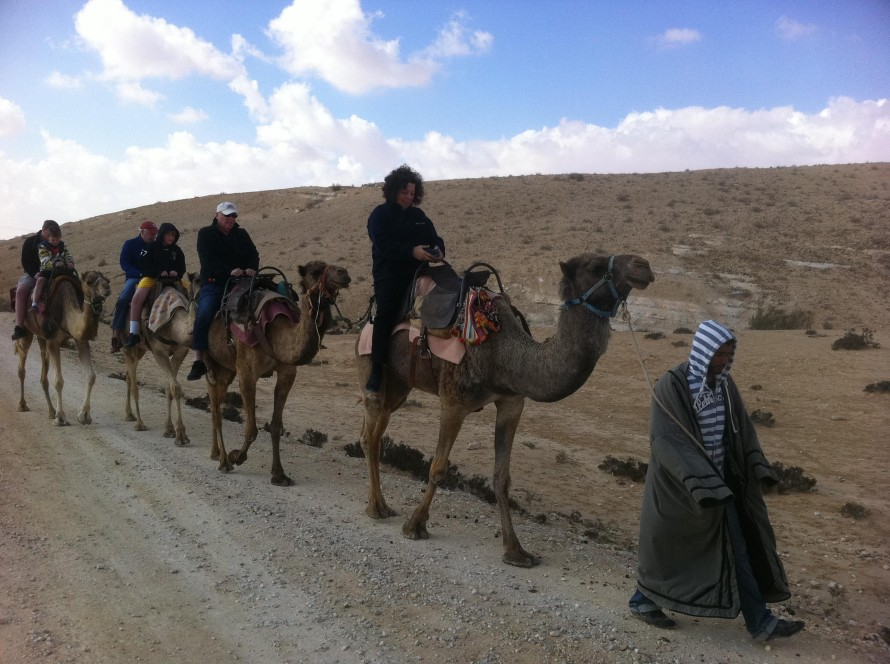Camel Ride in the Negev, Israel